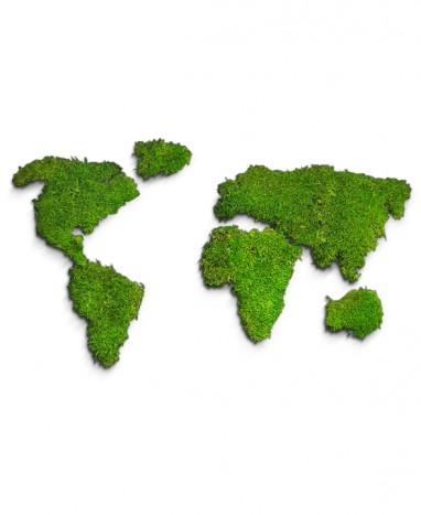 Carte du Monde Végétalisée - Max le Fleuriste - Max le Fleuriste