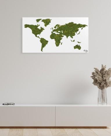 Cadre végétalisé Carte du monde • Max le Fleuriste  - Max le Fleuriste