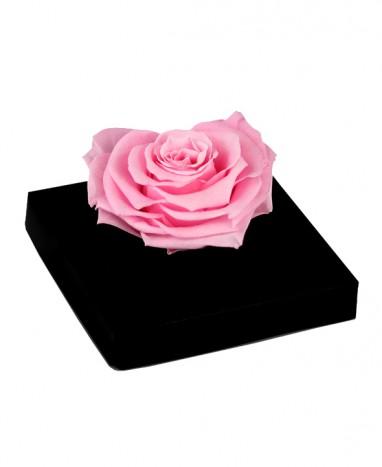 Rose rose Éternelle Cœur - Max le Fleuriste  - Max le Fleuriste