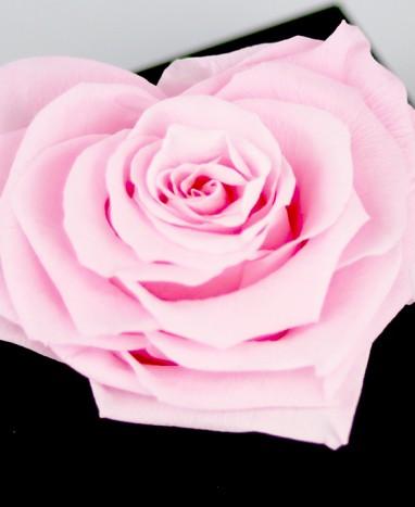Rose rose Éternelle Cœur - Max le Fleuriste - Livraison de fleurs à domicile - Max le Fleuriste