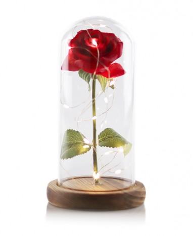 Rose sous cloche à leds • Livraison de fleurs à domicile  - Max le Fleuriste